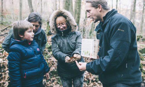 Benj'Anim , curieux de nature à charleville-Mézières dans les Ardennes