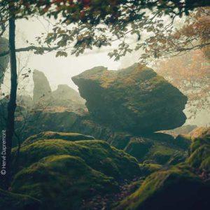 Nature et géologie Nature et agriculture Rando-thème Nature par Benj'Anim à charleville Mézières dans les Ardennes