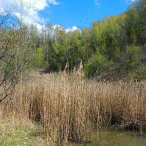 Bois en Val Découverte patrimoine par benjanim charleville mézières ardennes